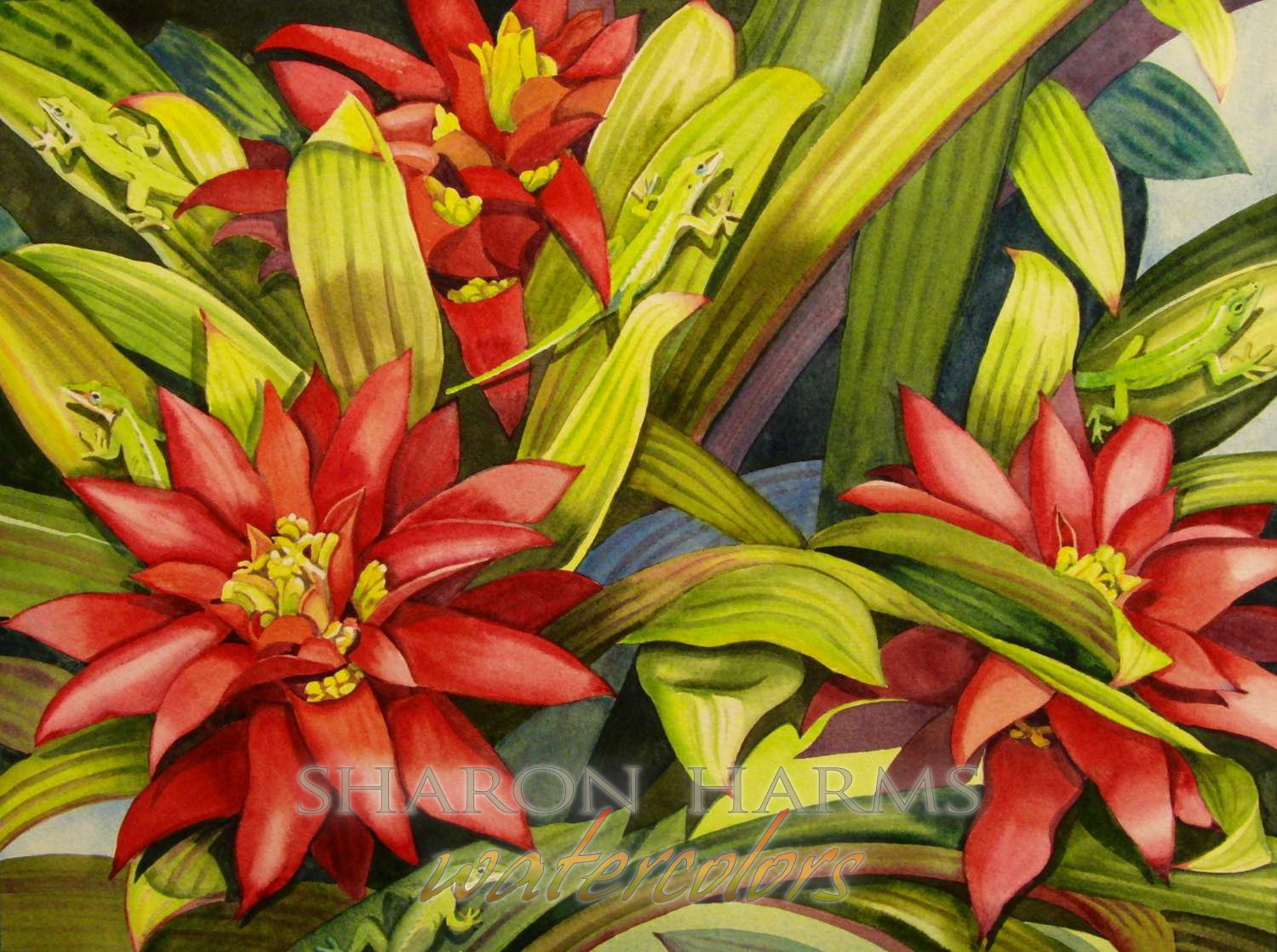 Anoles and Bromeliads