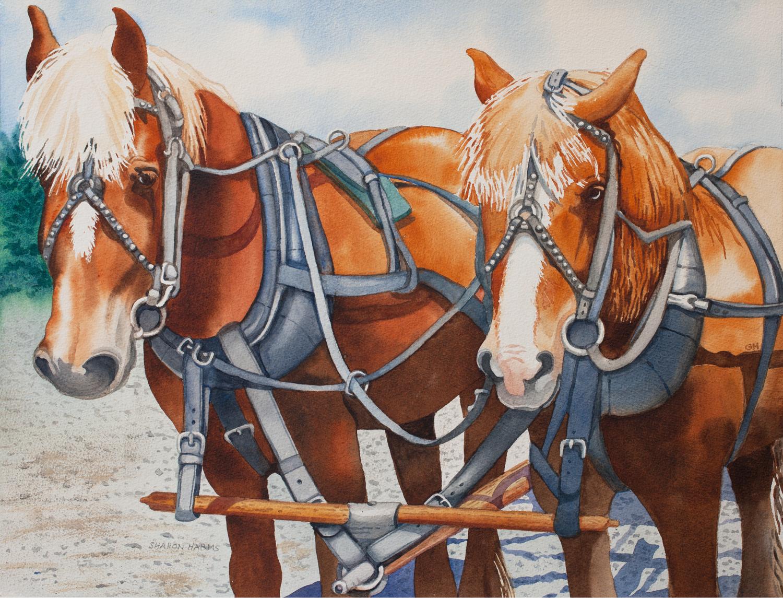 Greenbrier Horse Team