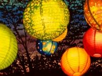 Paper Lanterns 1